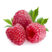 Куплю свіжі ягоди малини,  закупка малини Україна